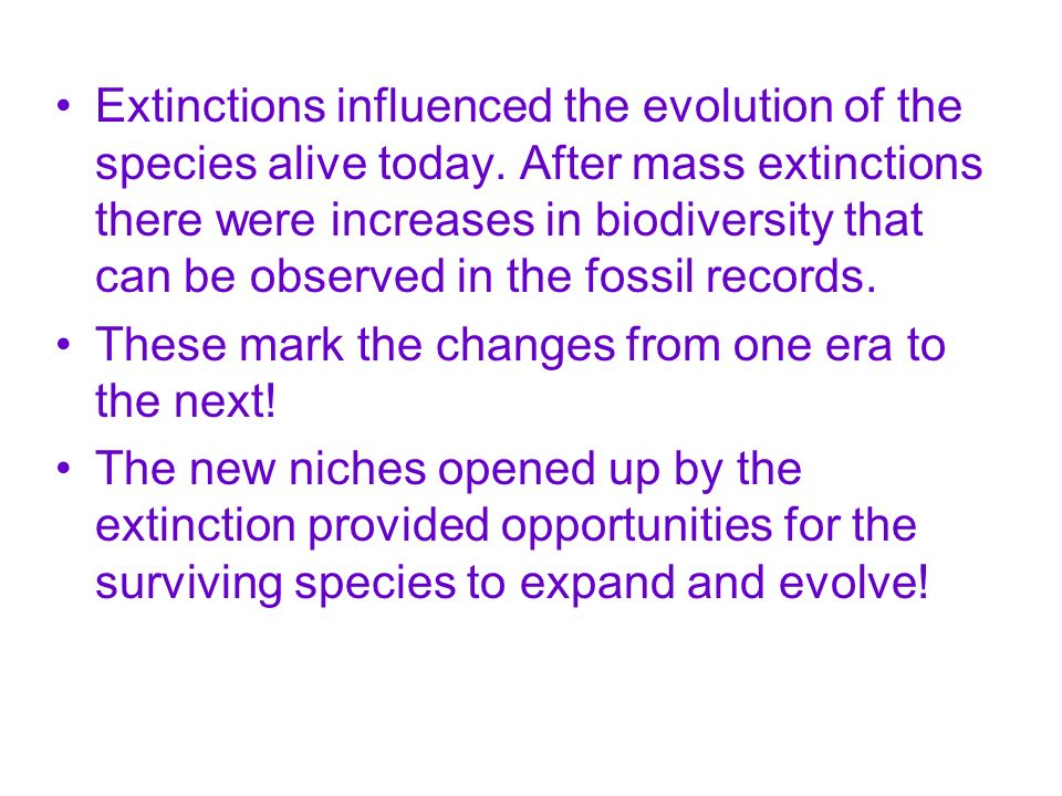 Extinctions influenced the evolution of the species alive today