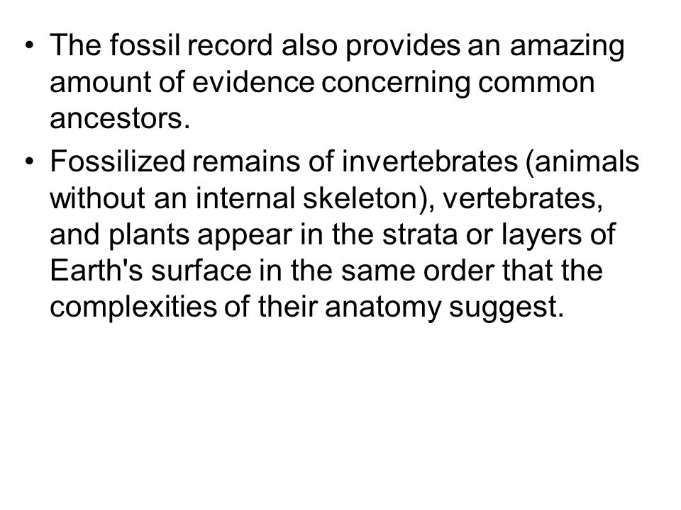 The fossil record also provides an amazing amount of evidence concerning common ancestors.