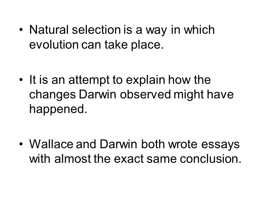 natural selection essay conclusion