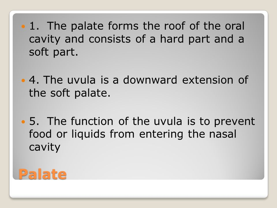 1. The palate forms the roof of the oral cavity and consists of a hard part and a soft part.