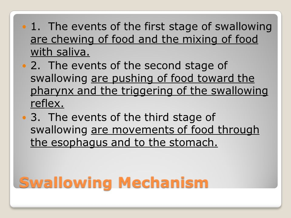 1. The events of the first stage of swallowing are chewing of food and the mixing of food with saliva.