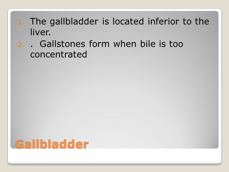 Gallbladder The gallbladder is located inferior to the liver.