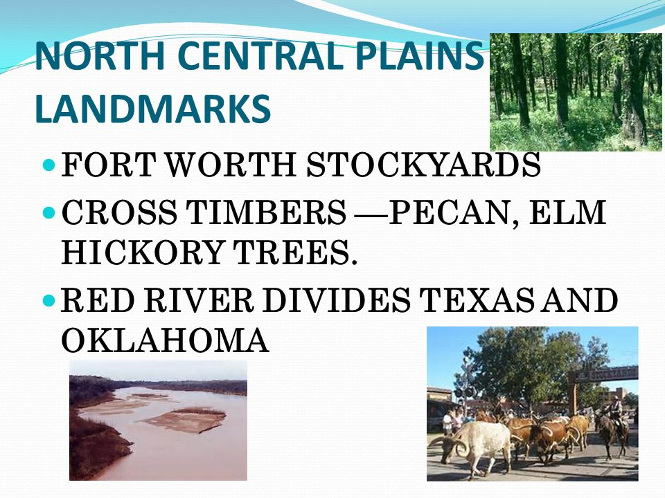 North Central Plains Of Texas