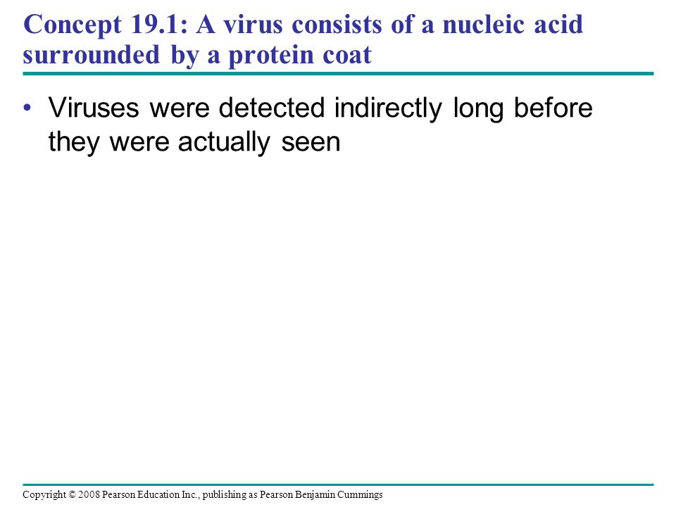 Concept 19.1: A virus consists of a nucleic acid surrounded by a protein coat