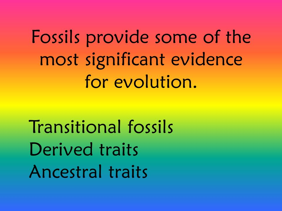 Fossils provide some of the most significant evidence for evolution.
