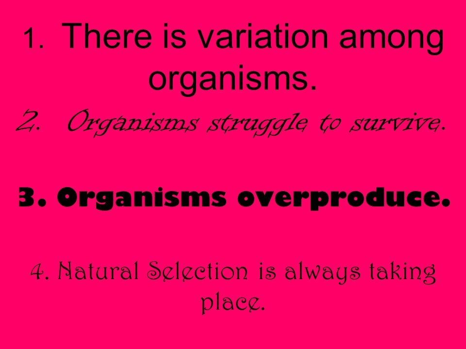 1. There is variation among organisms. 2. Organisms struggle to survive.