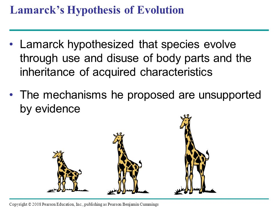 Lamarck's Hypothesis of Evolution
