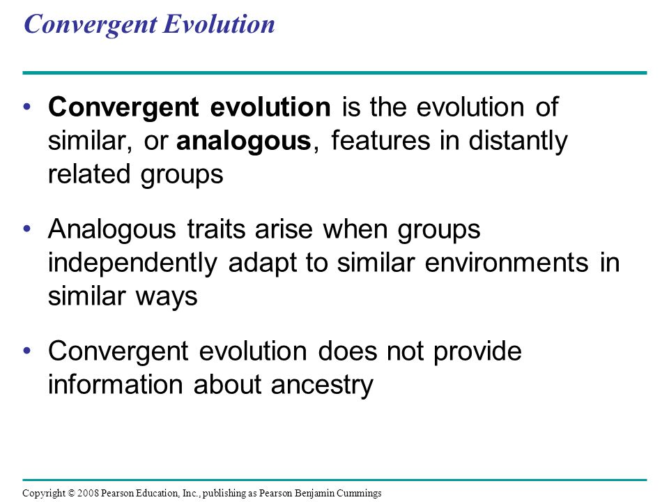 Convergent evolution does not provide information about ancestry