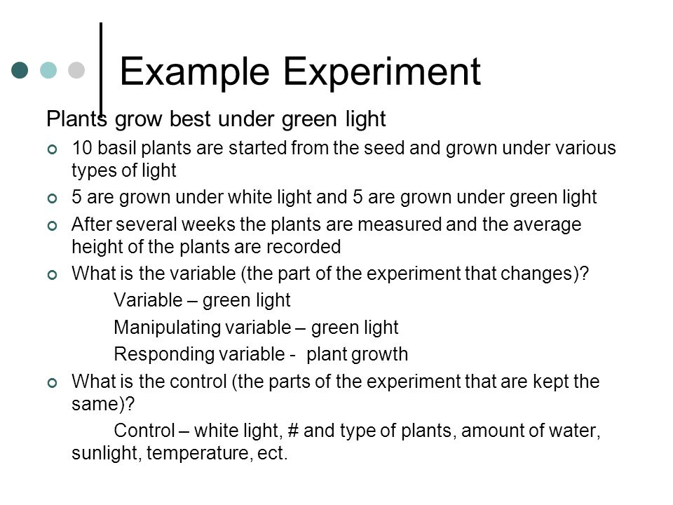 Example Experiment Plants grow best under green light