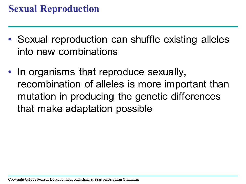 Sexual Reproduction Sexual reproduction can shuffle existing alleles into new combinations.