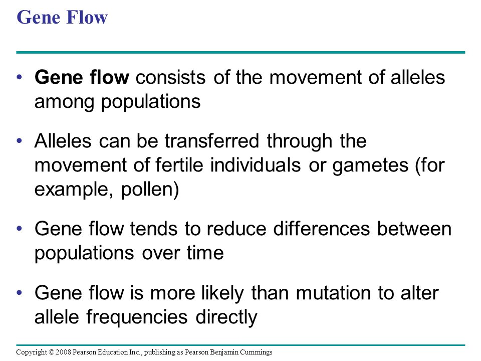 Gene Flow Gene flow consists of the movement of alleles among populations.