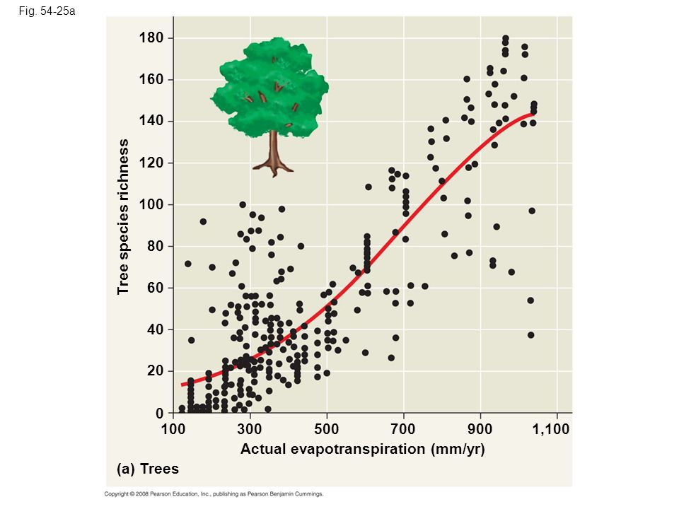 Actual evapotranspiration (mm/yr) (a) Trees