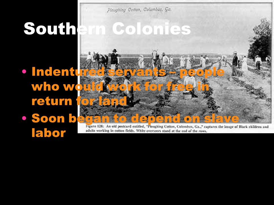 Southern Colonies Indentured servants – people who would work for free in return for land.