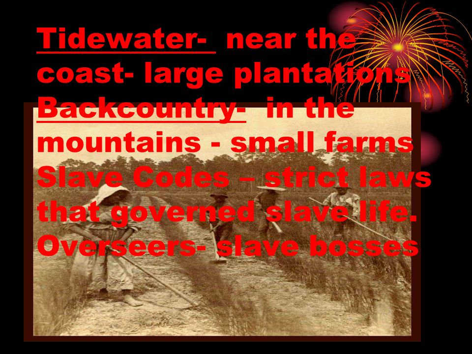 Tidewater- near the coast- large plantations Backcountry- in the mountains - small farms Slave Codes – strict laws that governed slave life.
