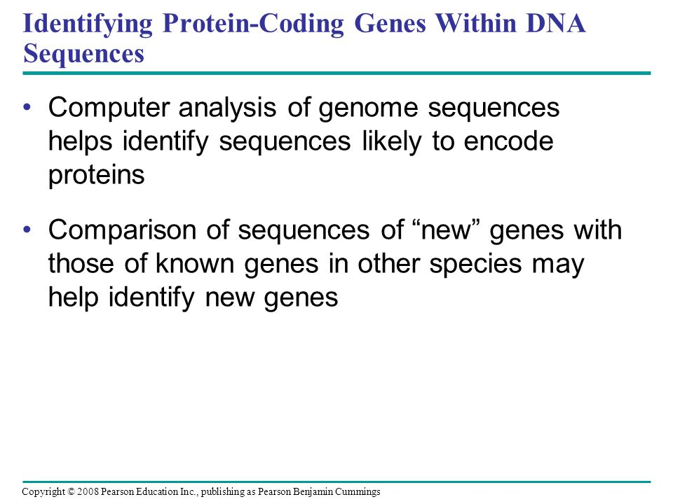 Identifying Protein-Coding Genes Within DNA Sequences