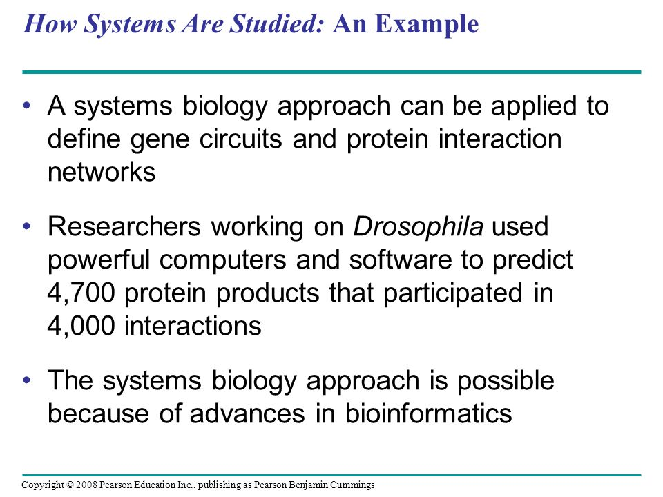 How Systems Are Studied: An Example