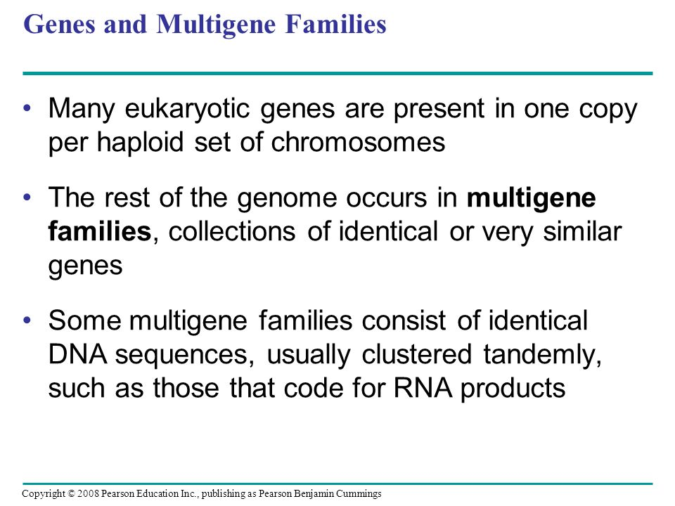 Genes and Multigene Families