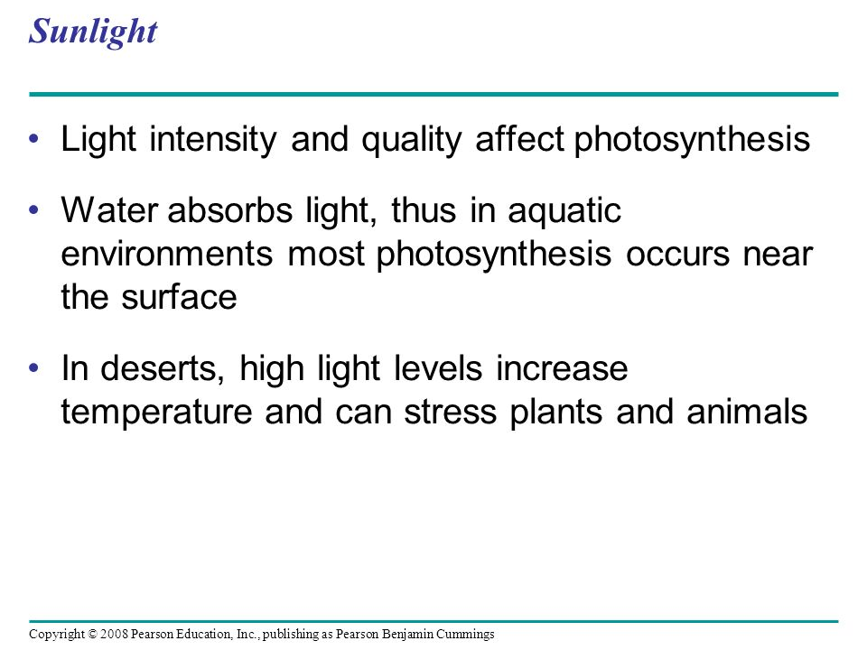 Sunlight Light intensity and quality affect photosynthesis.