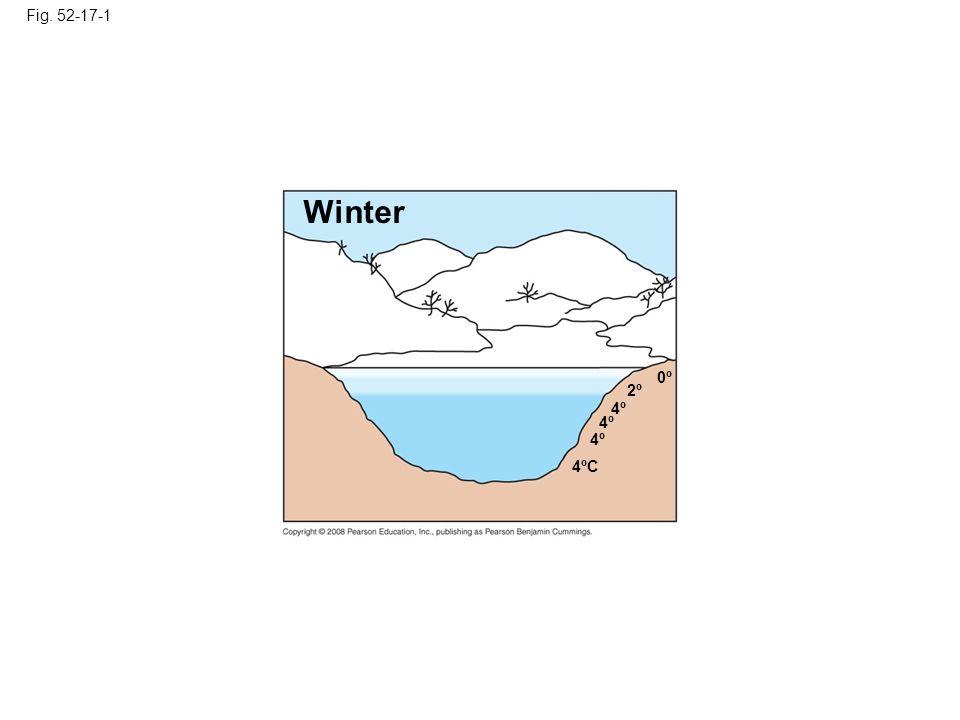 Fig. 52-17-1 Winter. 0º. 2º. 4º. 4º. 4º. Figure 52.17 Seasonal turnover in lakes with winter ice cover.