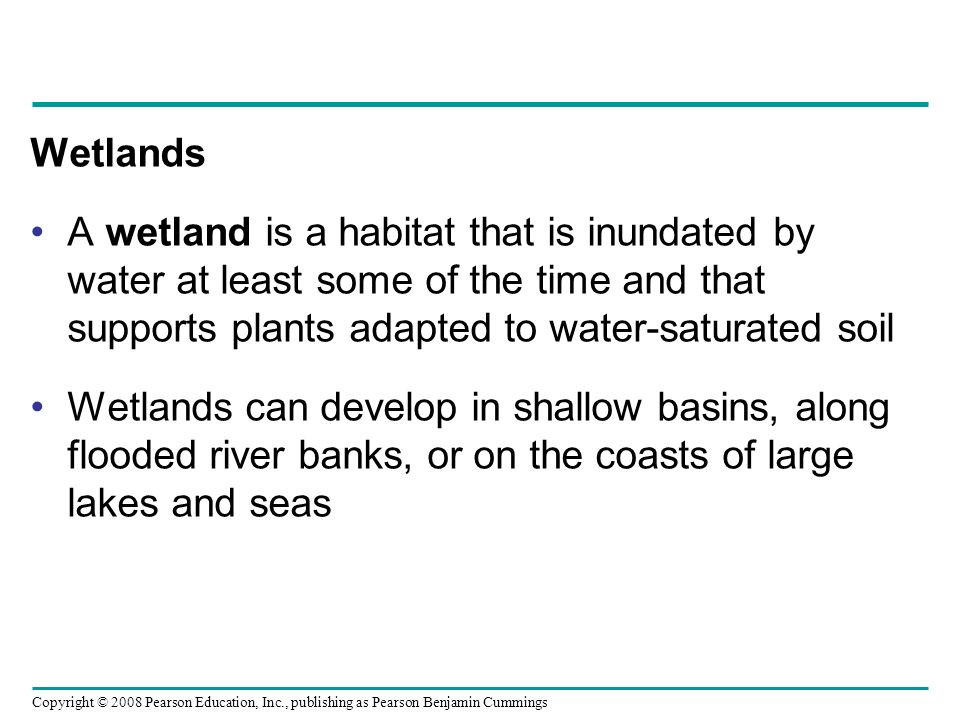 Wetlands A wetland is a habitat that is inundated by water at least some of the time and that supports plants adapted to water-saturated soil.