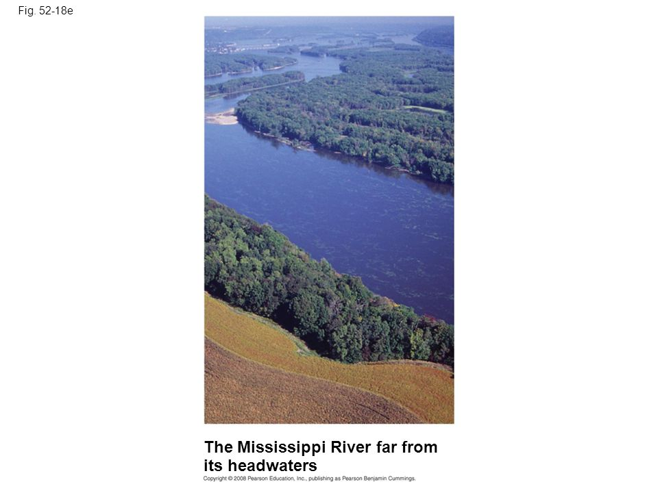 The Mississippi River far from its headwaters
