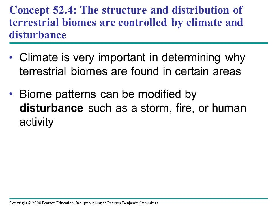 Concept 52.4: The structure and distribution of terrestrial biomes are controlled by climate and disturbance