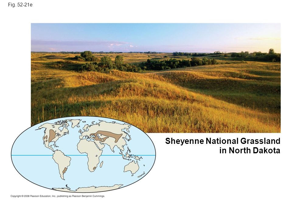 Sheyenne National Grassland in North Dakota