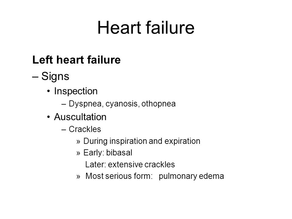 Common Diseases Of The Heart And Circulatory System  Ppt. Top Rated Gre Prep Books Refinance Home Loans. Johnson Insurance Management. Self Contained Eyewash Station. Mustang Shelby Gt350 For Sale. Champion Foundation Repair Art Schools In Ma. Car Repair Insurance For Older Cars. Tree Trimming Tampa Fl Loyalty Programs Cards. Film College California Lewis Carpet Cleaners