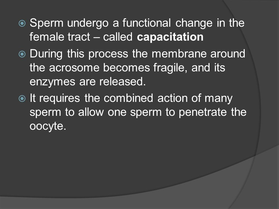 Sperm undergo a functional change in the female tract – called capacitation