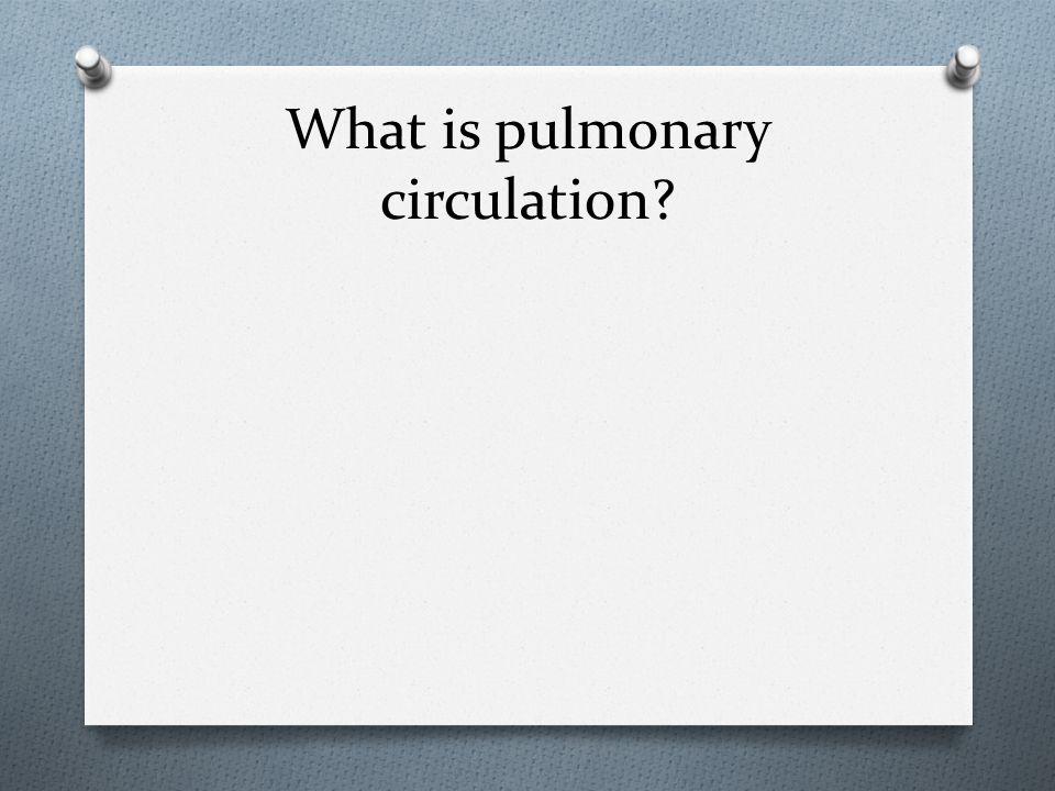 What is pulmonary circulation