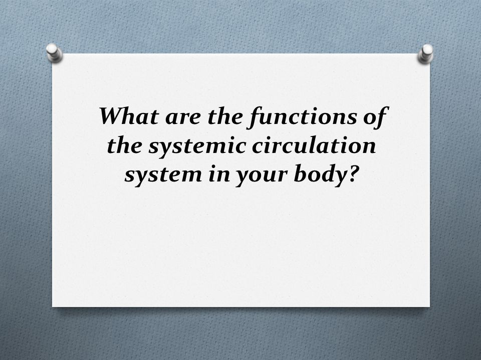 What are the functions of the systemic circulation system in your body