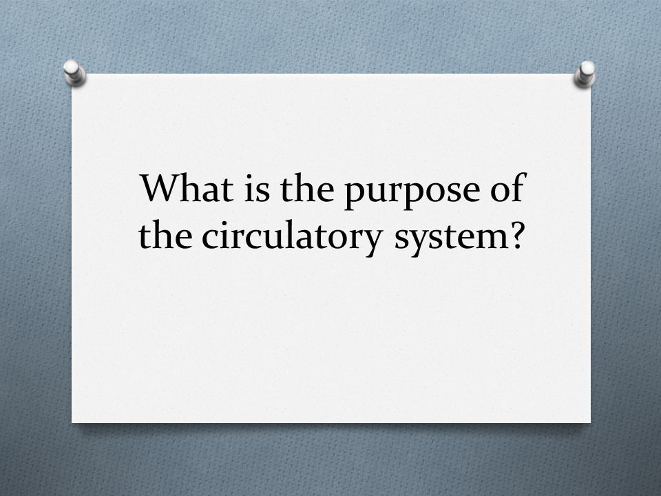 What is the purpose of the circulatory system