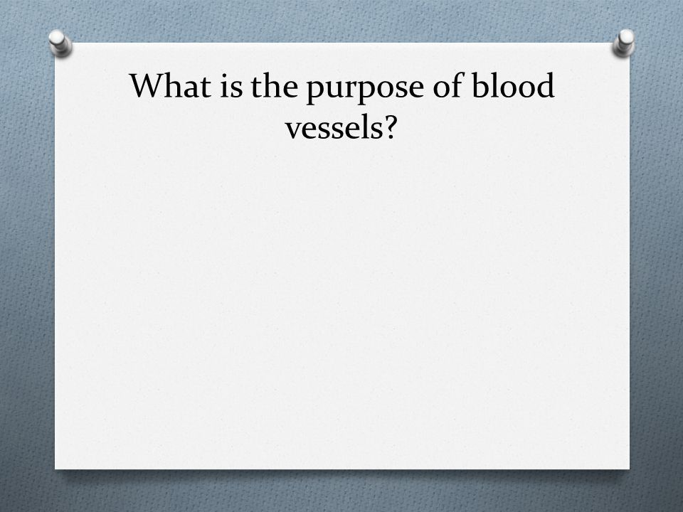 What is the purpose of blood vessels