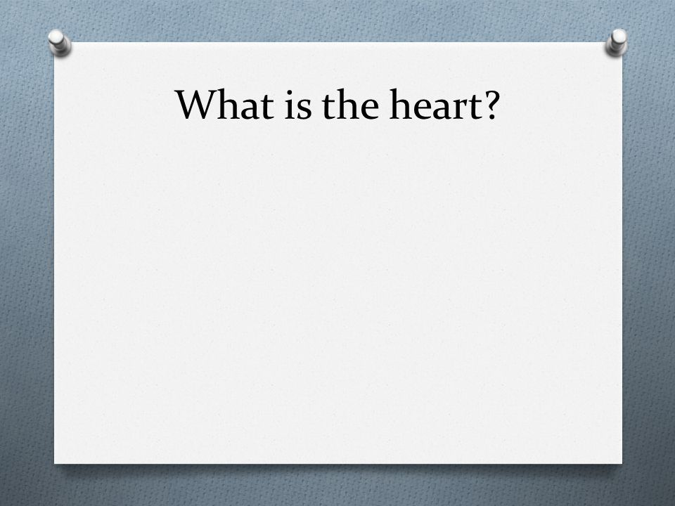 What is the heart