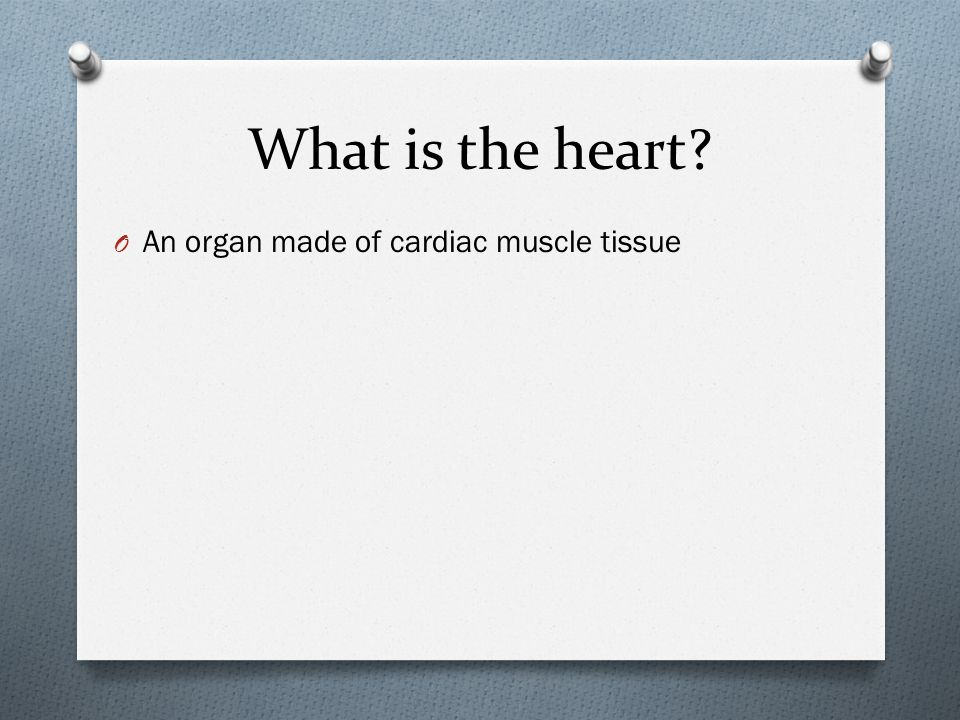 What is the heart An organ made of cardiac muscle tissue