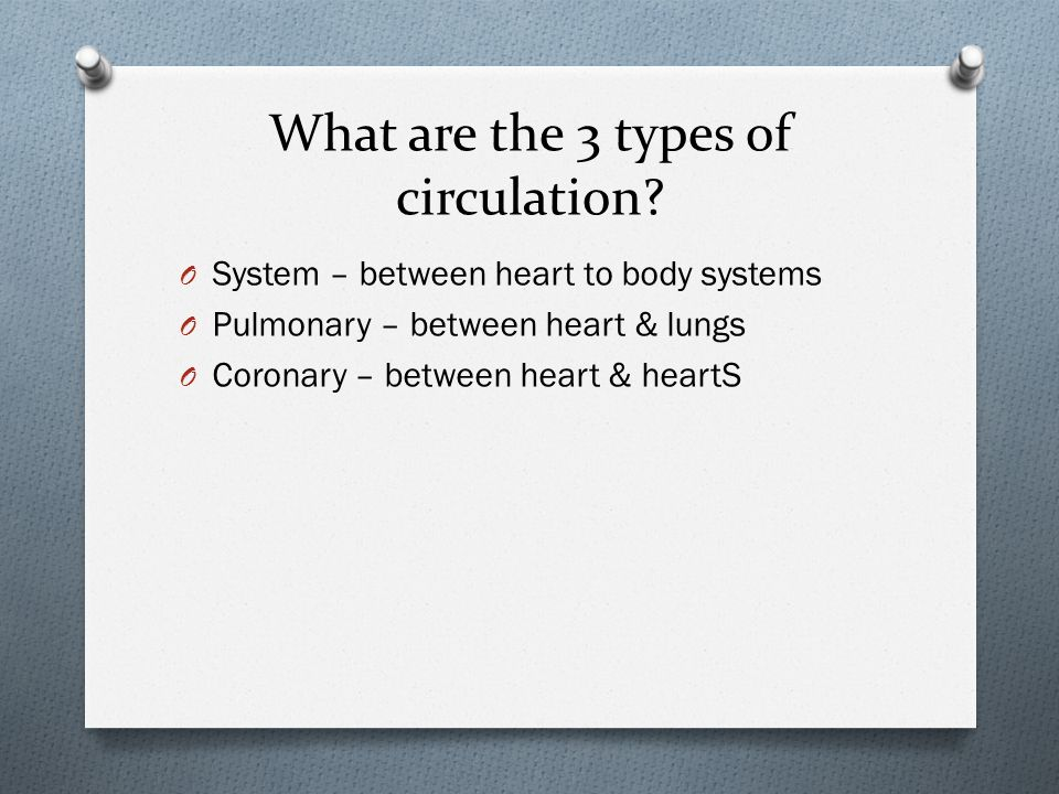What are the 3 types of circulation