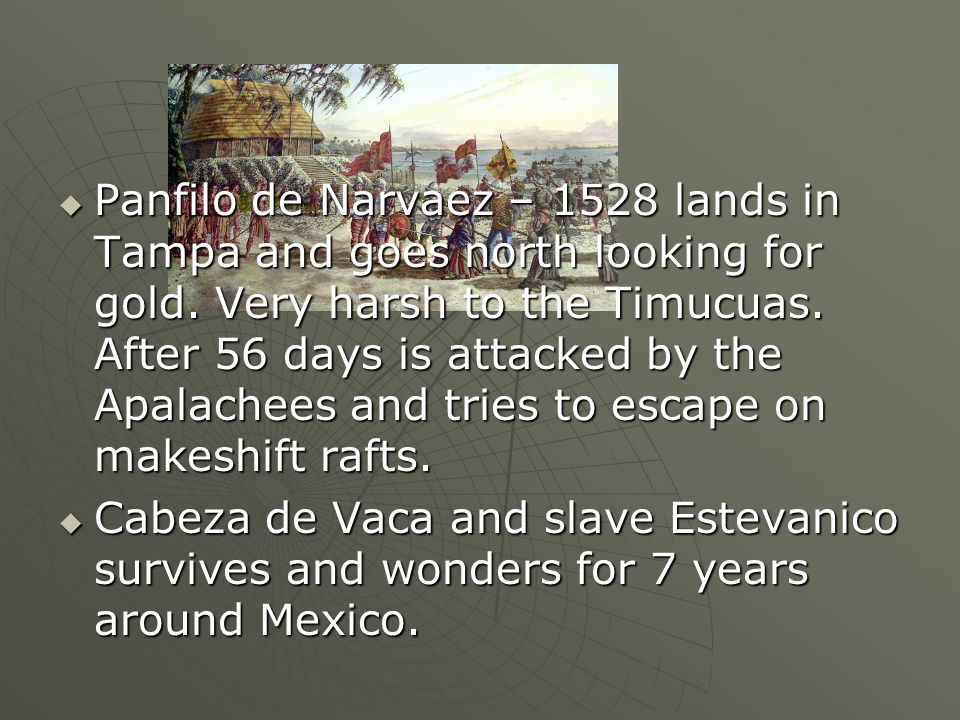 Panfilo de Narvaez – 1528 lands in Tampa and goes north looking for gold. Very harsh to the Timucuas. After 56 days is attacked by the Apalachees and tries to escape on makeshift rafts.