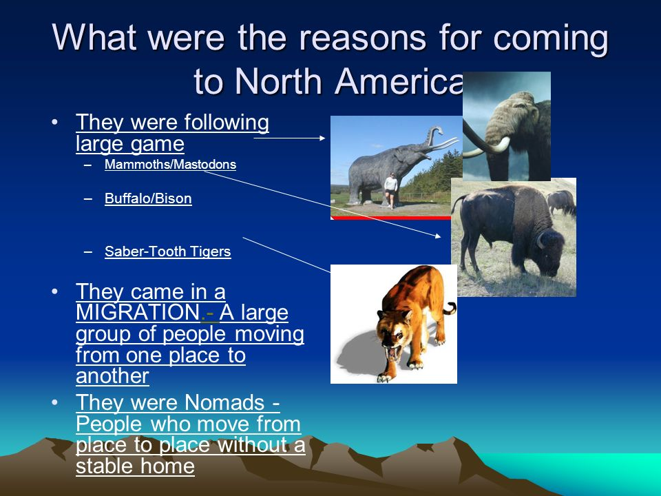 What were the reasons for coming to North America