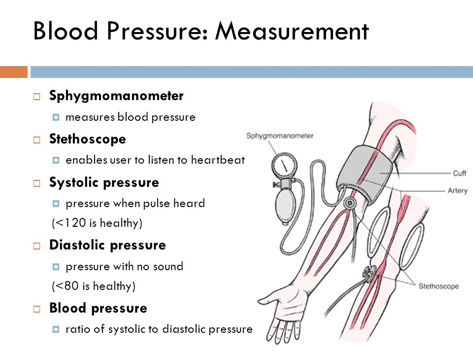 blood pressure heart rate lab report Blood pressure lab report results: table 1: average heart rate and pq interval heart rate (beats/min): at rest after exercise lead i 6977 13043 lead ii.