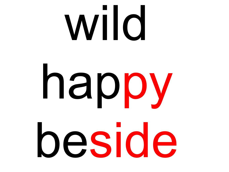 wild happy beside