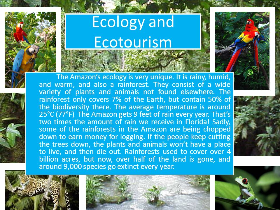 Ecology and Ecotourism