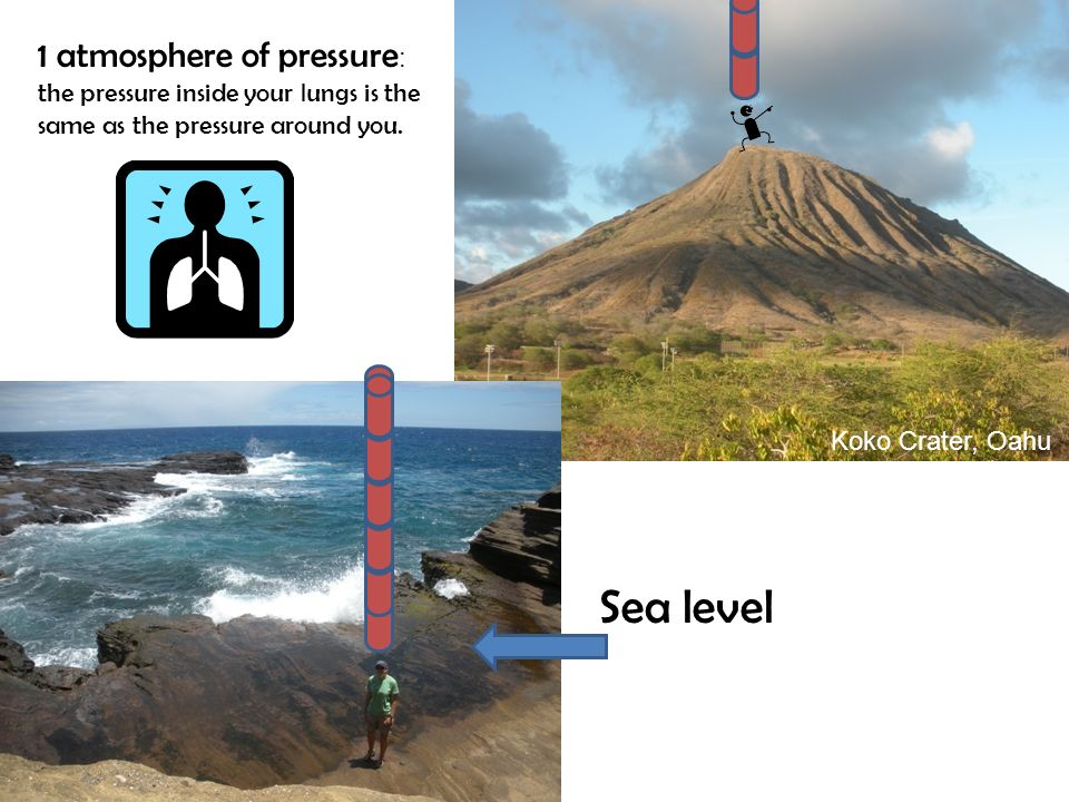 1 atmosphere of pressure: the pressure inside your lungs is the same as the pressure around you.