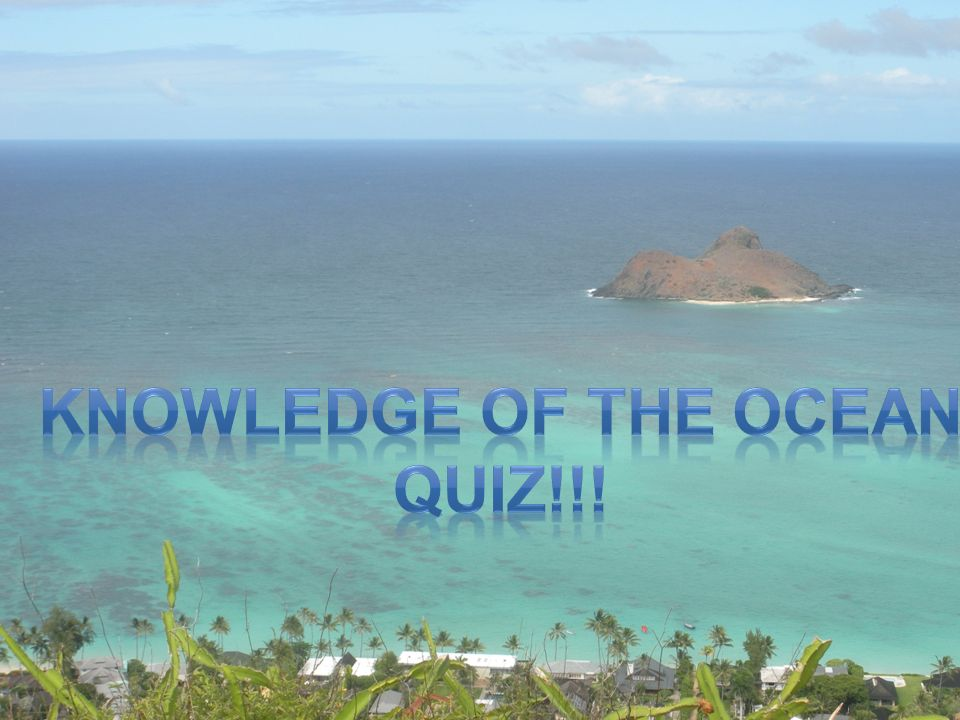 Knowledge of the Ocean QUIZ!!!