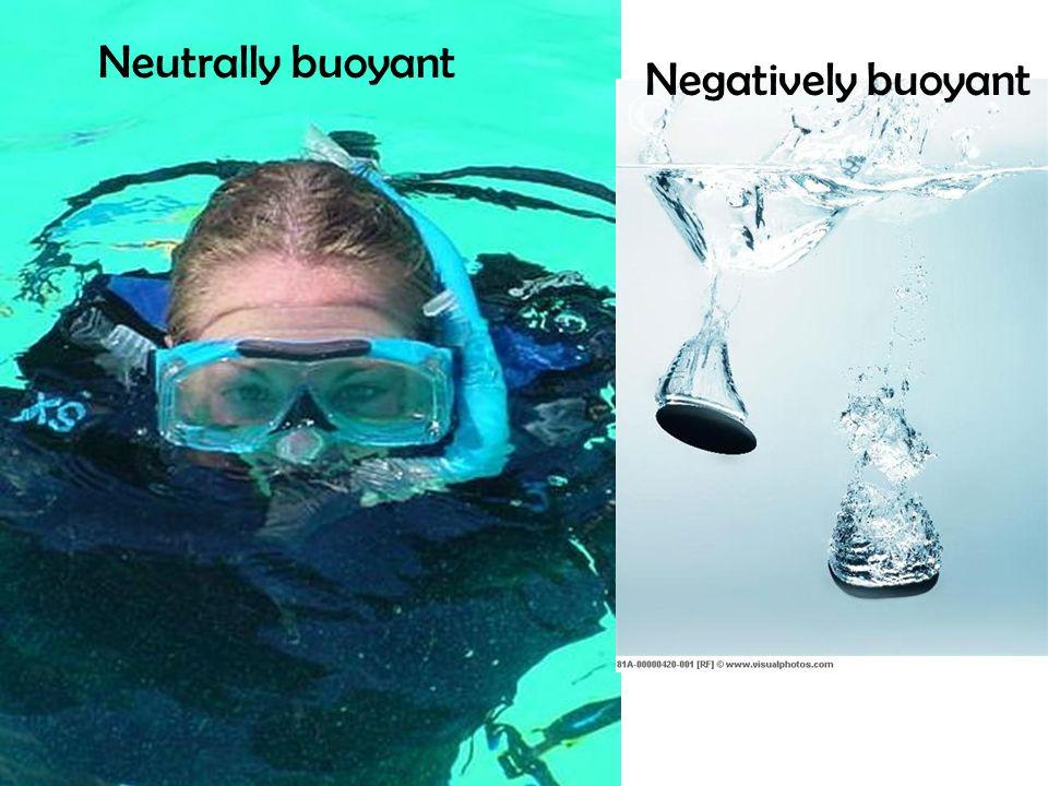 Neutrally buoyant Negatively buoyant
