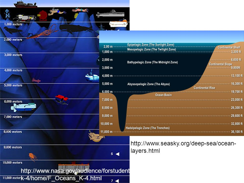 http://www.seasky.org/deep-sea/ocean-layers.html http://www.nasa.gov/audience/forstudents/k-4/home/F_Oceans_K-4.html.