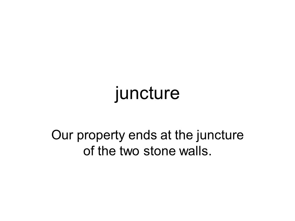 Our property ends at the juncture of the two stone walls.