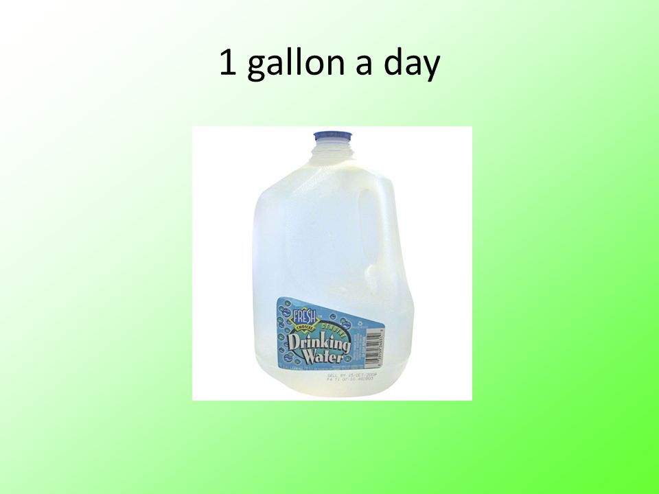 1 gallon a day