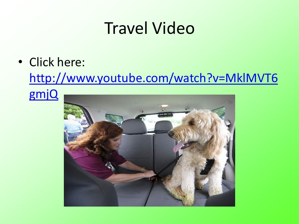 Travel Video Click here:   v=MklMVT6gmjQ