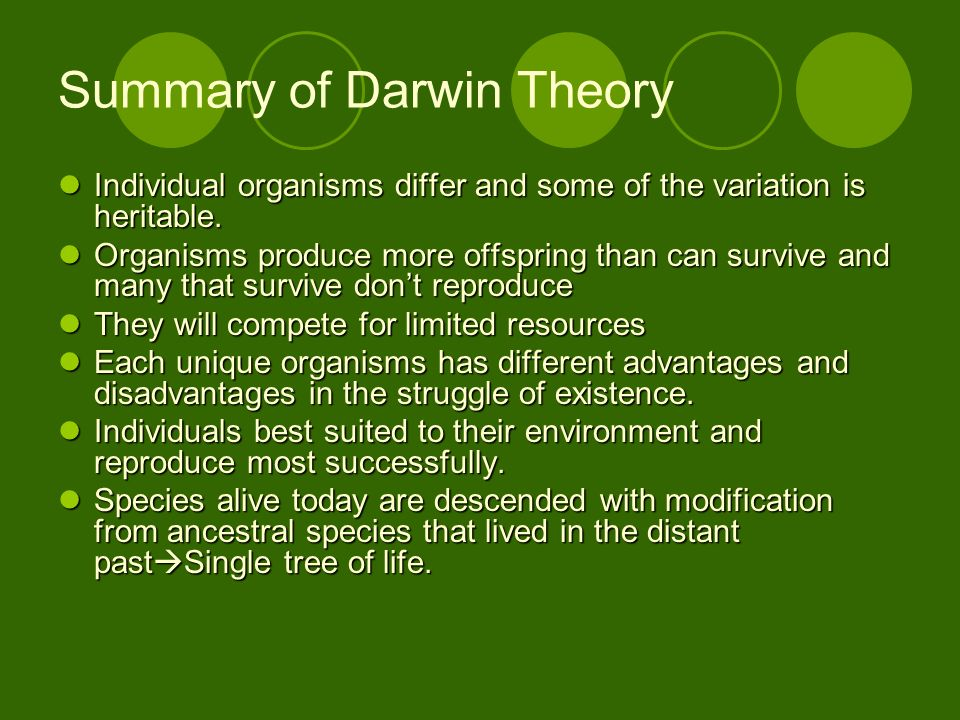 Summary of Darwin Theory