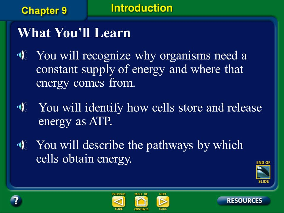 What You'll Learn You will recognize why organisms need a constant supply of energy and where that energy comes from.
